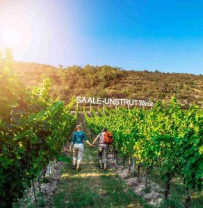Pair on vineyard Saale-Unstrut wine