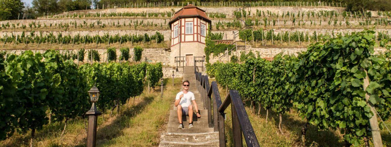 Patrick Muntzinger in the ducal vineyard © Patrick Muntzinger